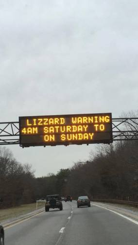Lizzard Warning road sign from 2016 blizzard