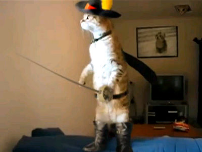 standing cat with sword and cape